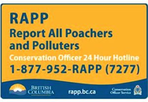 Report All Poachers and Polluters